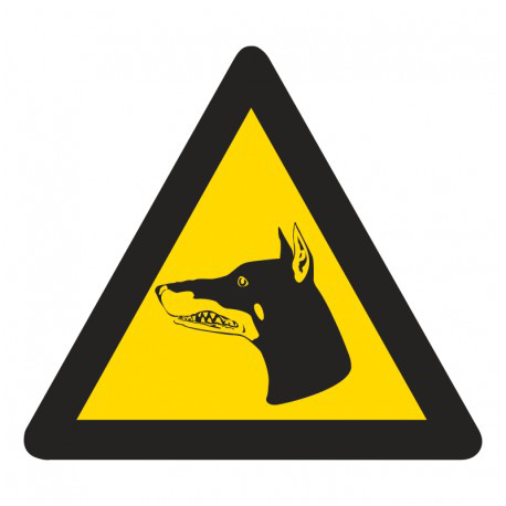 WW19: Beware Of Dogs